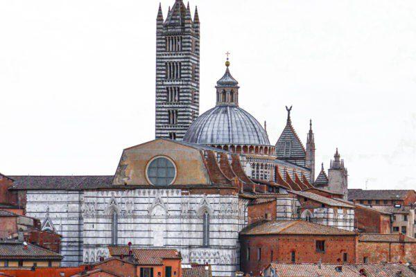 purpurpurpur Siena